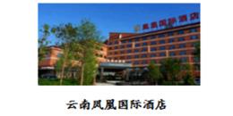 云南凤凰国际酒店